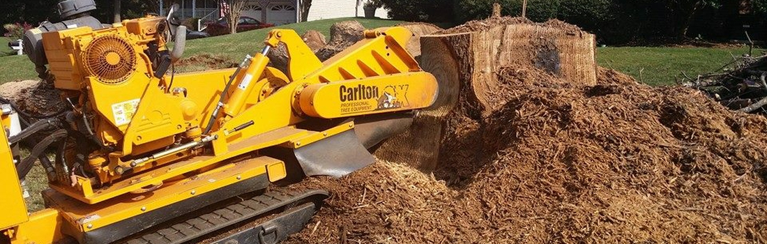 stump grinding Greenville SC