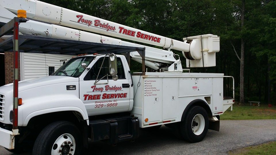Tree removal bucket truck in Greenville SC