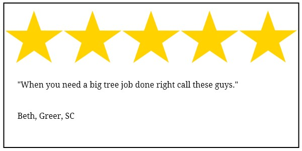 Greer tree service 5 star review
